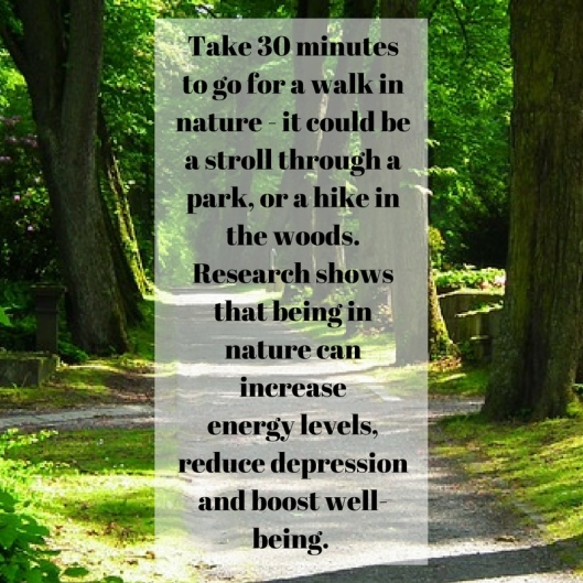 Take 30 minutes to go for a walk in nature - it could be a stroll through a park, or a hike in the woods. Research shows that being in nature can increaseenergy levels, reduce depression